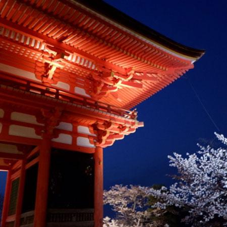 京都の脱毛サロンおすすめ11選!人気の全身脱毛とVIO脱毛をチェックのイメージ