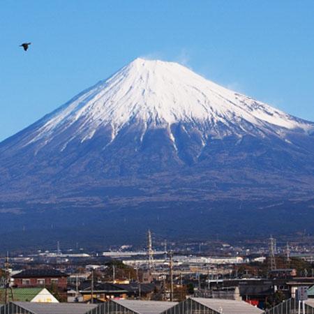 静岡市の脱毛サロンおすすめ12選!人気の全身脱毛とVIO脱毛をチェックのイメージ